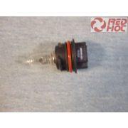 Izzó 12V 40/40W Honda ZX